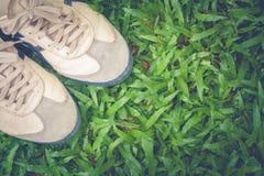 Fermez-vous vers le haut de l'espadrille sale se tenant sur l'herbe verte Image libre de droits