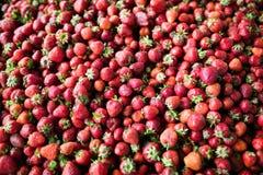 Fermez-vous vers le haut de l'image du sort de fraises fraîches images libres de droits