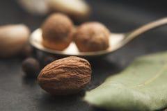 Fermez-vous vers le haut de l'image de la noix de muscade et des épices autour sur la table foncée Photographie stock libre de droits