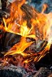 Fermez-vous vers le haut de l'incendie Photo libre de droits