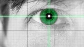 Fermez-vous vers le haut de l'oeil vert sur des lignes de grille Image libre de droits