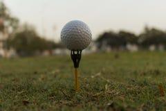 Fermez-vous vers le haut de la boule de golf sur la pièce en t Photographie stock libre de droits
