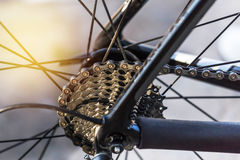 Fermez-vous vers le haut de la cassette de vélo de montagne sur la roue arrière avec la chaîne Photographie stock libre de droits