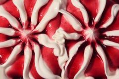 Fermez-vous vers le haut de la crême glacée de dessert doux Images stock