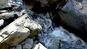 Fermez-vous vers le haut de la cuisson d'une crique de petite rivière traversant les roches banque de vidéos