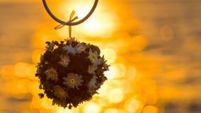fermez-vous vers le haut de la fleur au coucher du soleil Image stock
