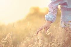 Fermez-vous vers le haut de la main de girl's sur le gisement de fleur d'herbe scène de paysage, liberté se sentante photographie stock libre de droits