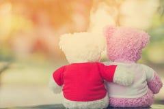Fermez-vous vers le haut de la poupée de deux ours Photo libre de droits