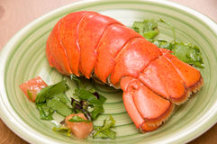 Homard Images stock