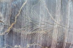 Texture de roche Images stock