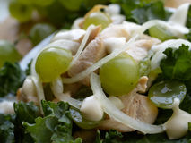 Fermez-vous vers le haut de la salade. avec peu de DOF Photographie stock libre de droits