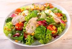 Fermez-vous vers le haut de la salade saine de jardin de poulet d'un plat image libre de droits