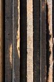 Fermez-vous vers le haut de la texture en bois de brame Photographie stock