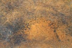 Fermez-vous vers le haut de la texture en bois de brun foncé photos stock