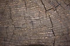 Fermez-vous vers le haut de la vieille texture extérieure en bois Photo libre de droits