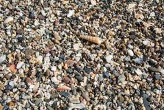 Fermez-vous vers le haut de la vue de la plage avec de petits pierres, sable et coquilles Images stock