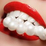 Fermez-vous vers le haut de la vue de portrait de beauté d'un sourire naturel de jeune femme avec les lèvres rouges Détail classi Photos stock