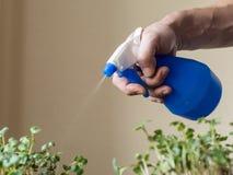 Fermez-vous vers le haut de la vue des mains d'un homme, pulvérisant l'eau Image libre de droits