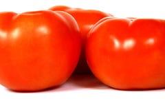 Fermez-vous vers le haut de la vue des tomates Image libre de droits