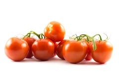 Fermez-vous vers le haut de la vue des tomates rouges sur un fond blanc Photographie stock libre de droits