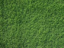 Fermez-vous vers le haut de la vue supérieure de l'herbe verte de détail de texture pour le fond, concept de sport de nature photo libre de droits