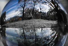 Fermez-vous vers le haut de la vue sur de beaux arbres de paysage en ciel bleu par la sphère de boule de lentille dans la couleur Photographie stock libre de droits