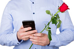 Fermez-vous vers le haut de rose et du service de mini-messages Photo libre de droits