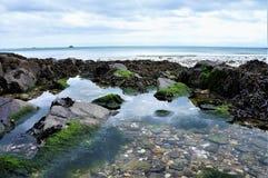 Fermez-vous vers le haut des cailloux sur la plage dans l'eau images libres de droits
