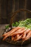 Fermez-vous vers le haut des carottes sales Photos libres de droits