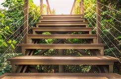 Fermez-vous vers le haut des escaliers dans la forêt tropicale avec le soleil Photos libres de droits