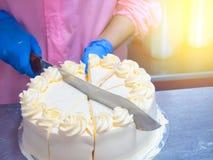 Fermez-vous vers le haut des femmes coupant le gâteau Images libres de droits