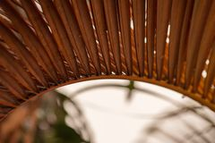 Fermez-vous vers le haut des feuilles des palmiers secs photo libre de droits
