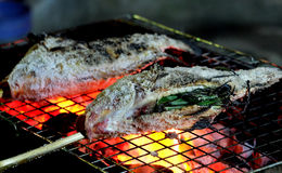 Fermez-vous vers le haut des fishs frais grillés avec du sel Images libres de droits