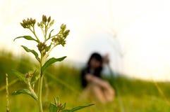 Fermez-vous vers le haut des fleurs avec le fond et la fille de tache floue Photo libre de droits