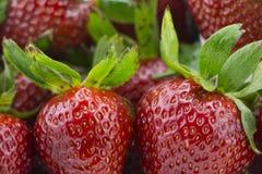 Fermez-vous vers le haut des fraises Photos stock
