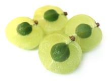 Fermez-vous vers le haut des fruits coupés en tranches d'amla Image libre de droits