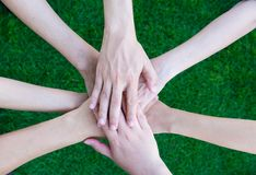 Fermez-vous vers le haut des gens d'affaires asiatiques de mains ensemble au-dessus de l'herbe verte o Images libres de droits