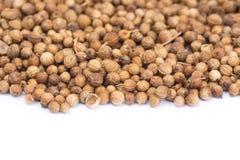Fermez-vous vers le haut des graines de coriandre, macro Photos stock