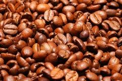 Fermez-vous vers le haut des grains de café Image libre de droits