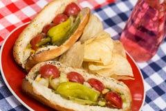 Fermez-vous vers le haut des hot-dogs de style de Chicago avec le soda image stock