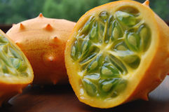 Fermez-vous vers le haut des melons à cornes Images stock