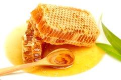 Fermez-vous vers le haut des nids d'abeilles sur le fond blanc. Images libres de droits