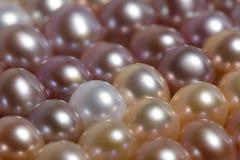Fermez-vous vers le haut des perles Image stock