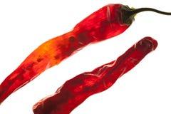 Fermez-vous vers le haut des poivrons rouges Images libres de droits