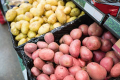 Fermez-vous vers le haut des pommes de terre Photographie stock libre de droits