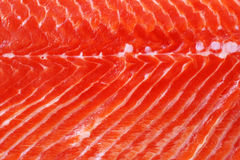 Fermez-vous vers le haut des saumons Photos libres de droits