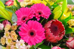 Fermez-vous vers le haut du beau bouquet sur le fond blanc images stock
