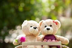 Fermez-vous vers le haut du bel ours de nounours du brun deux dans le concept de boîte en bois, amour Photographie stock libre de droits