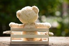 Fermez-vous vers le haut du bel ours de nounours dans la boîte en bois, concept au sujet de loneline Photo stock