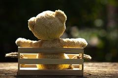 Fermez-vous vers le haut du bel ours de nounours dans la boîte en bois, concept au sujet de loneline Photo libre de droits